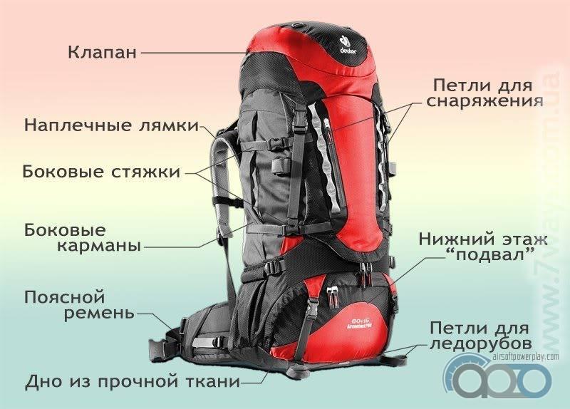 тонкости выбора рюкзака