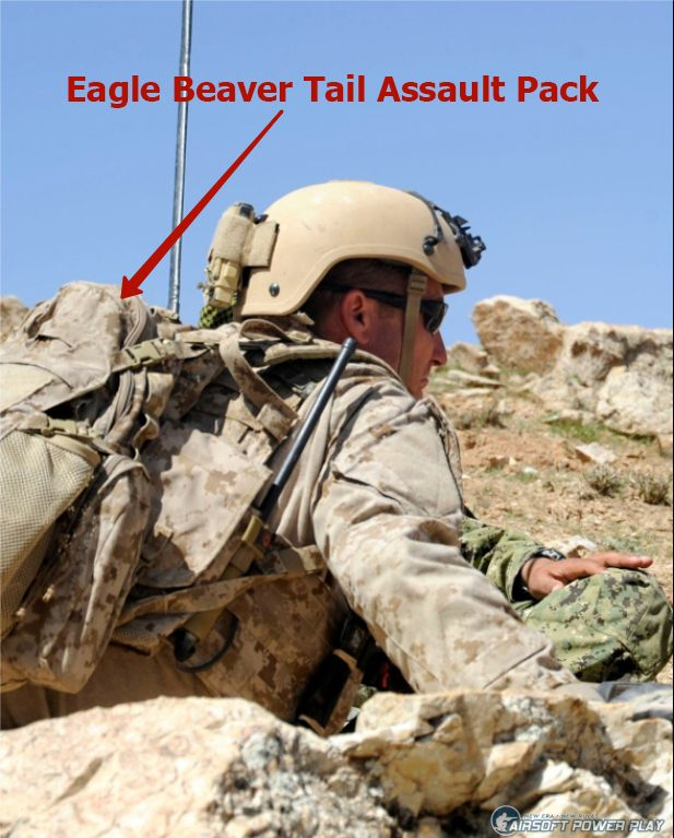 Eagle Beaver Tail Assault Pack aor1